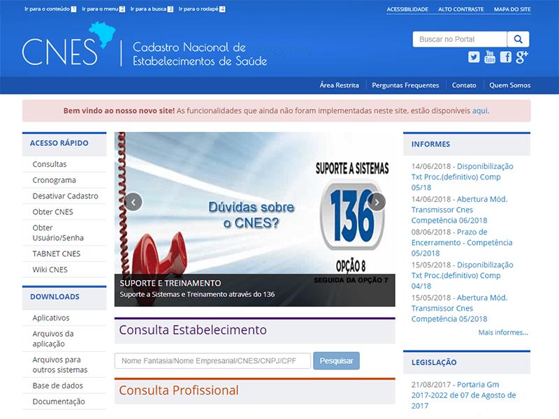 CNES Consulta