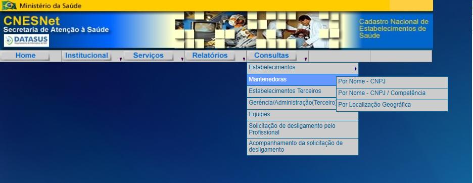Consulta CNES por Profissional