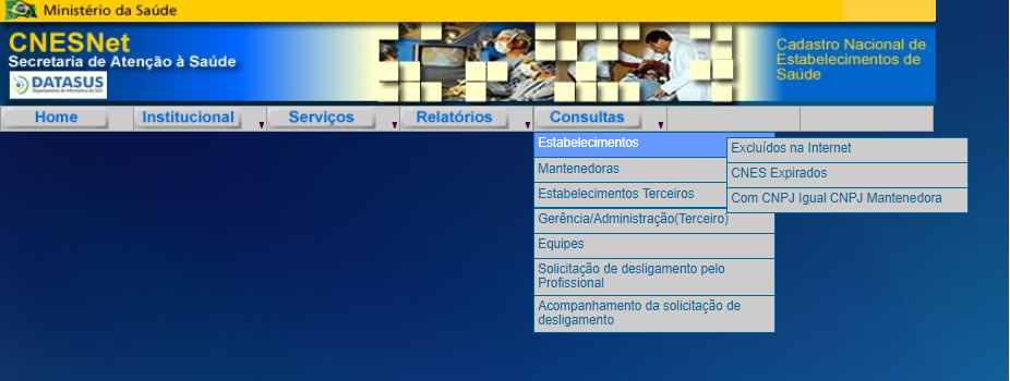 Consulta CNES por estabelecimento